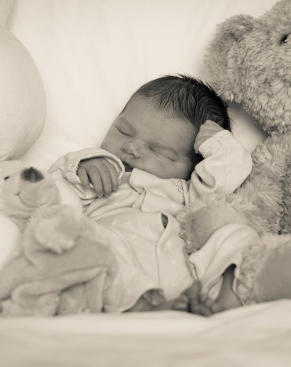 Sleeping with stuffed animals - New Born photography